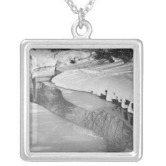 Stream in winter B&W Silver Plated Necklace