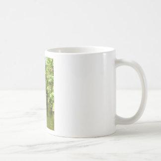 Stream Coffee Mugs