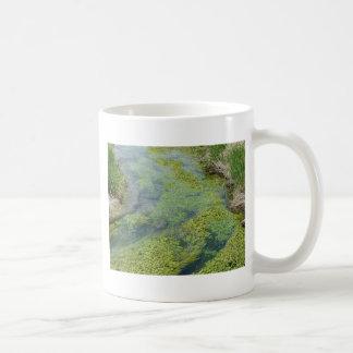 stream mugs