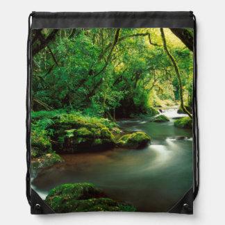 Stream Near Bridal Veil Falls, Sabie Drawstring Bag