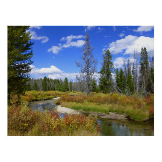 Stream near Redfish lake, Idaho. Poster