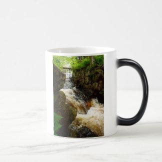 Stream of Life Coffee Mug (Morphing)
