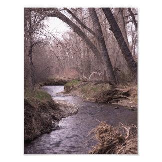 Streams Photo Print