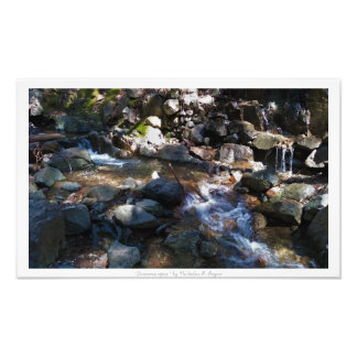 """Streamscapes,"" Waterfall Nature Decor Photo Print"