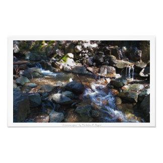 """Streamscapes,"" Waterfall Nature Decor Photo Print"