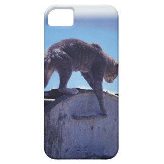 street cat barely there iPhone 5 case