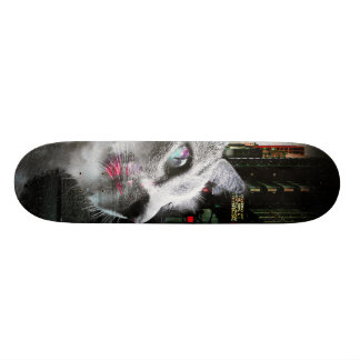 Street Cat Custom Skate Board