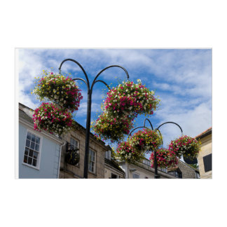 Street flowers acrylic wall art