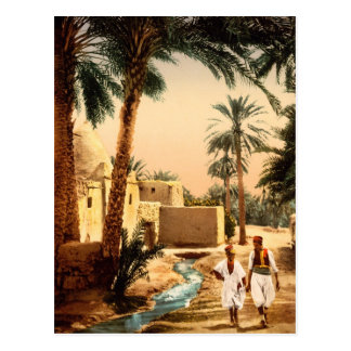 Street in the old town, Biskra, Algeria Postcard
