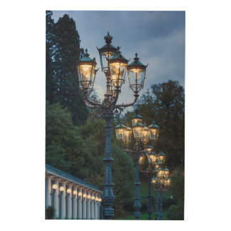 Street lamps at night, Germany Wood Print