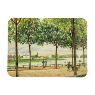 Street of Spanish Chestnut Trees by the River 187 Flexible Magnet
