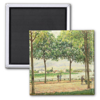 Street of Spanish Chestnut Trees by the River, 187 Square Magnet