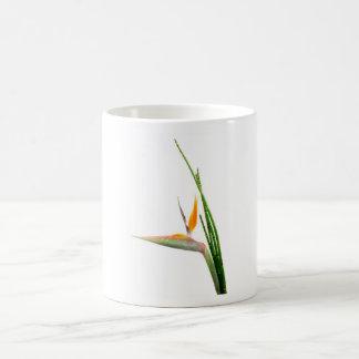 Strelitzia Reginae and reed Basic White Mug