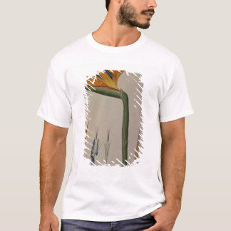 Strelitzia Reginae, from 'Les Strelitziacees' T-Shirt