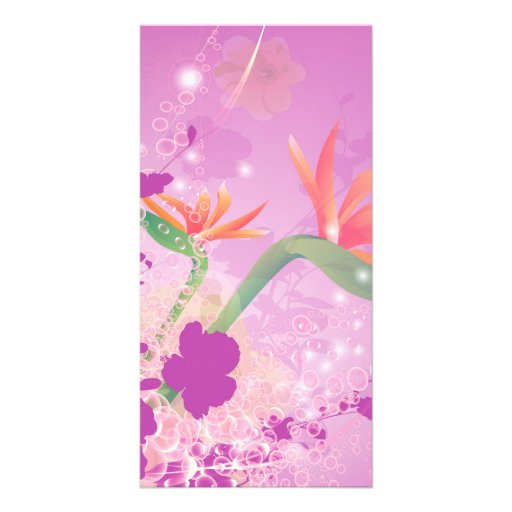 Strelizie, beautiful flower picture card
