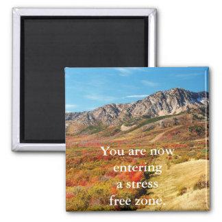 Stress Free Magnet