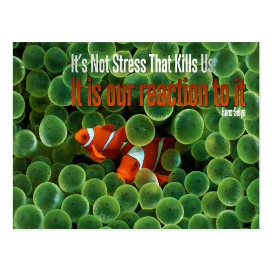 Stress Motivational Postcard