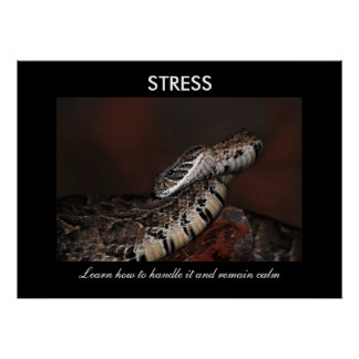 Stress Print
