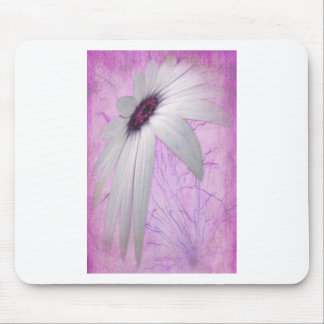 stretched daisy. mouse pad