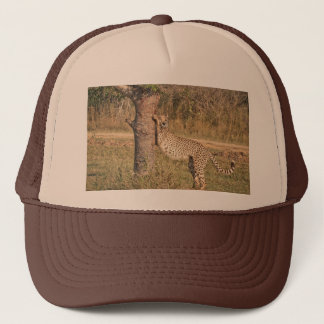 Stretching Cheetah Trucker Hat