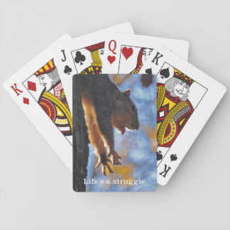 Stretching Squirrel 2 Playing Cards