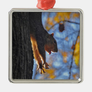 Stretching Squirrel Christmas Ornament