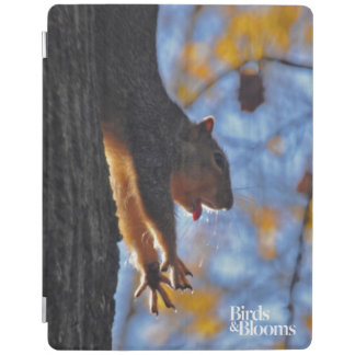 Stretching Squirrel iPad Cover