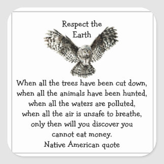 Striking Owl Respect the Earth Native American Square Sticker