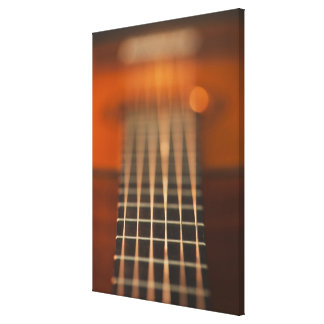 Strings of Acoustic Guitar Canvas Print