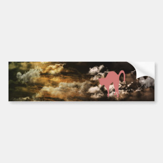 Stripe common coastal highway and cat bumper sticker