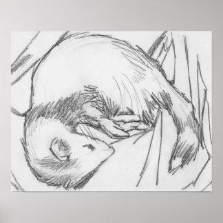 """Stripe"" Ferret Drawing Poster"