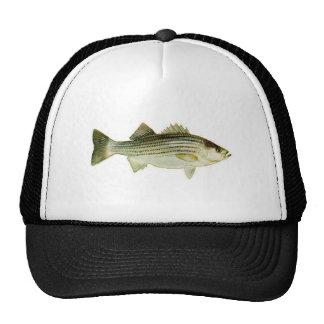 striped bass hats