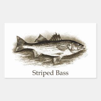 Striped Bass Logo (vintage) Rectangular Sticker
