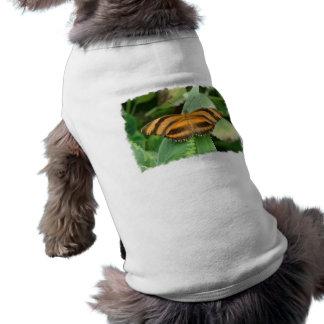 Striped Butterly Pet Shirt