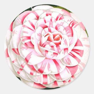Striped candy cane camellia round sticker