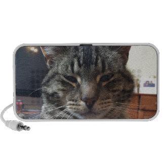 Striped cat laptop speakers