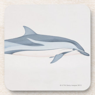 Striped Dolphin Coaster