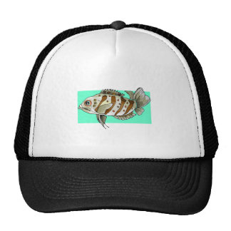 Striped Fish Mesh Hat