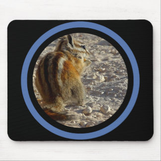 Striped Squirrel - Multi Frame Mouse Pad