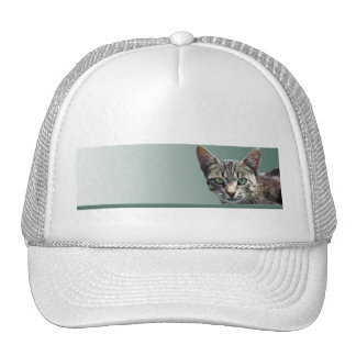 Striped Tabby with Green Eyes Cap