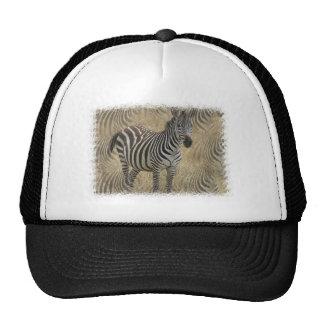 Striped Zebra Baseball Cap