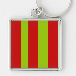 Stripes abstract pattern keychain