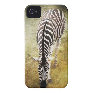 Stripes iPhone 4 Cover