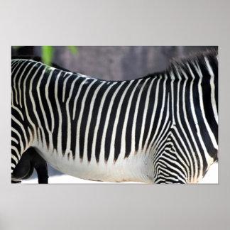 Stripes & More Stripes Print