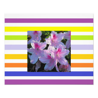 Stripes Pink Azaleas Photo