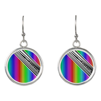 Stripes Vertical Hold Rainbow Frequency TV Bars Earrings