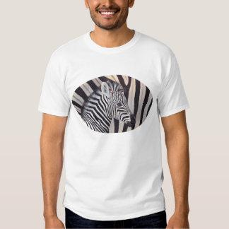 Stripes Zebra Baby and Mom shirt