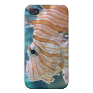 Stripey Fish iPhone 4 Cover