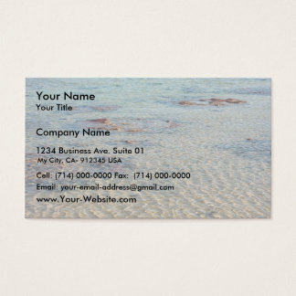 Stromatolites At Shark Bay Business Card