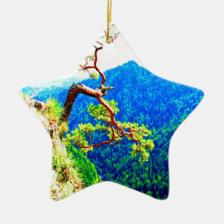 Strong life mountain top tree peek view tatra pola ornaments